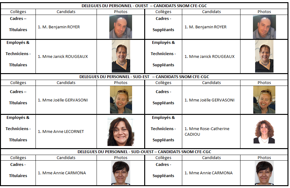 Candidats DP OUEST SUD SNOM CFE CGC